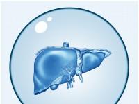 Jak zdiagnozować chorobę wątroby? Zobacz zestaw potrzebnych badań!